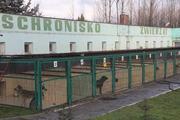 Legnica - Schronisko dla zwierząt